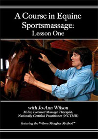 Photo of DVD - a Course in Equine Massage